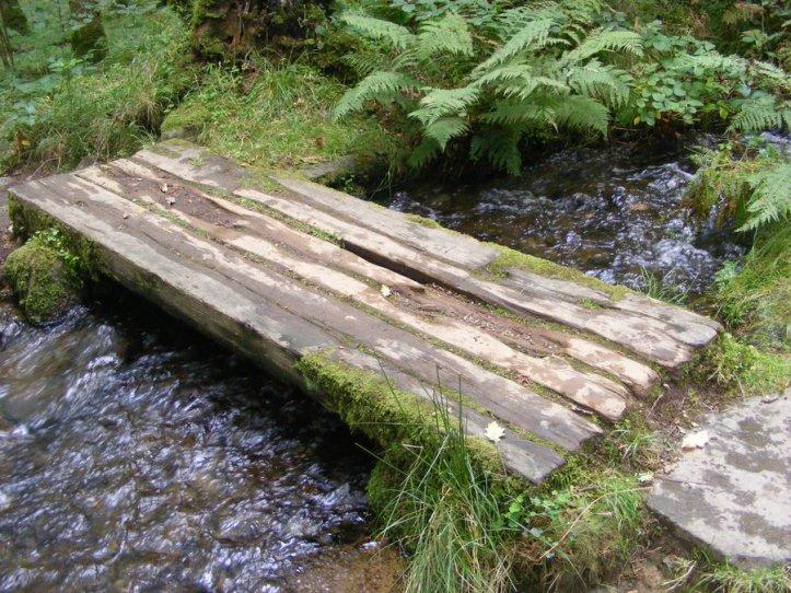 wooden_footbridge_by_miss_minn_deviant-d5en1a3